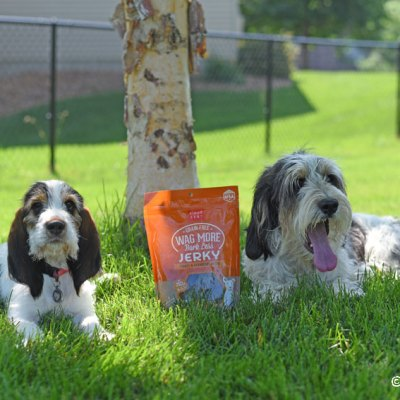 Guilt Free Goodness For Dogs – Turkey & Cranberry Jerky