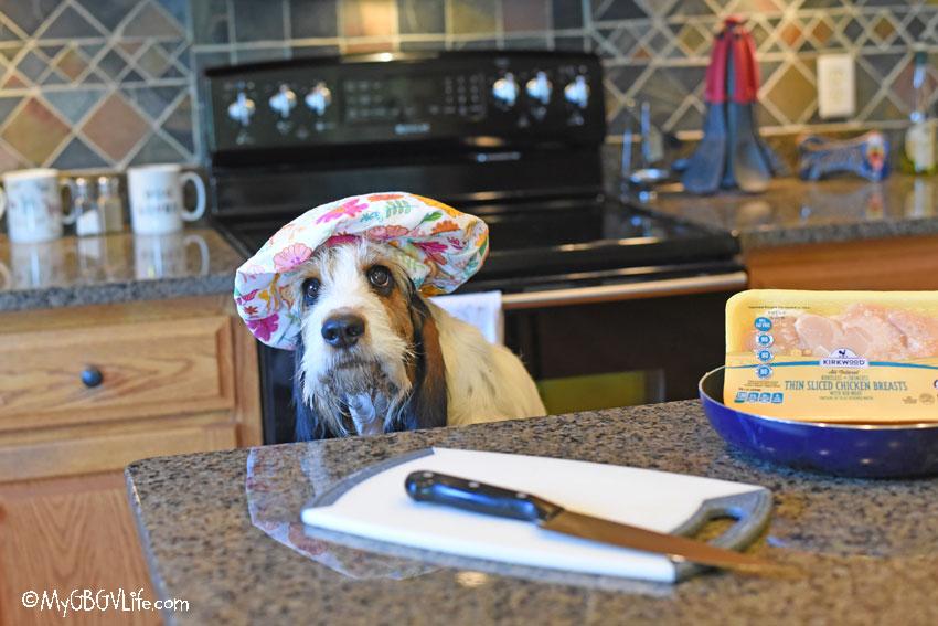 My GBGV Life Homemade Dog Training Treats Your Dog Will Love