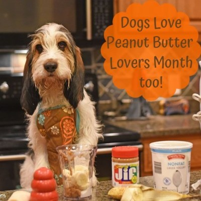 My GBGV Life Dogs Love Peanut Butter Lovers Month Too - Recipe