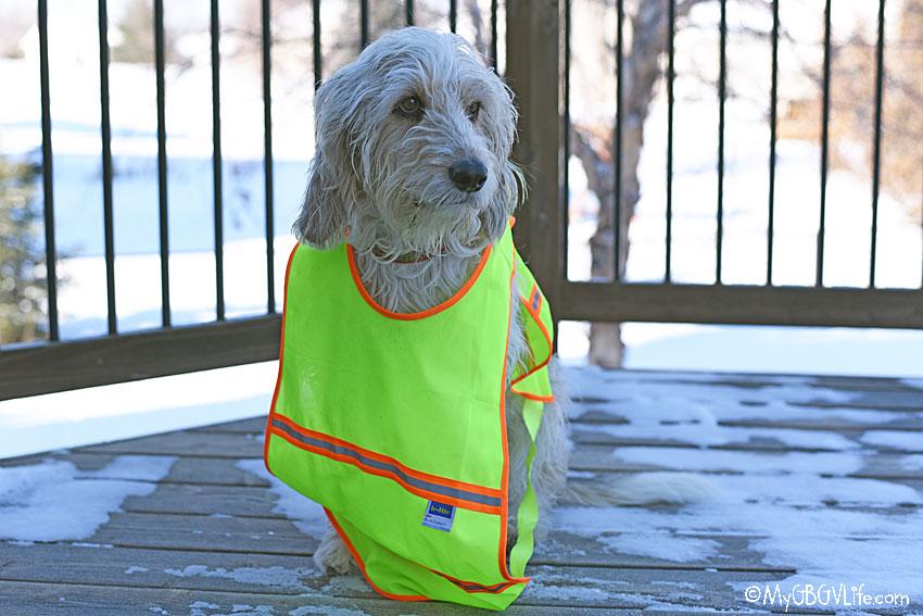 My GBGV Life reflective vest