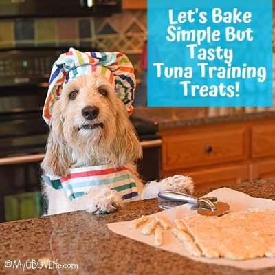 My GBGV Life Tuna Training Treats Will Knock Your Dogs Hat Off!