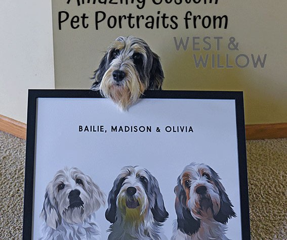 My GBGV Life Amazing Custom Pet Portraits From West & Willow