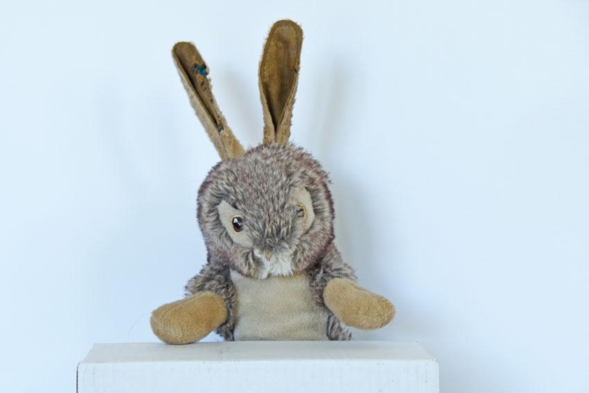 My GBGV Life the rabbit