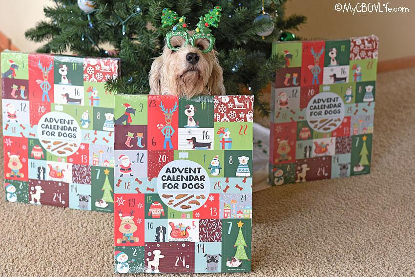 My GBGV Life Bailie with Advent Calendar