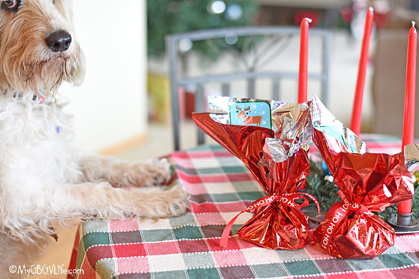 My GBGV Life Last Minute Holiday Gifts For Dogs