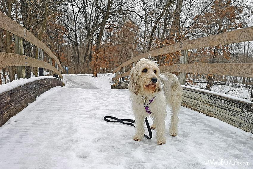 My GBGV Life Bailie on the bridge deck