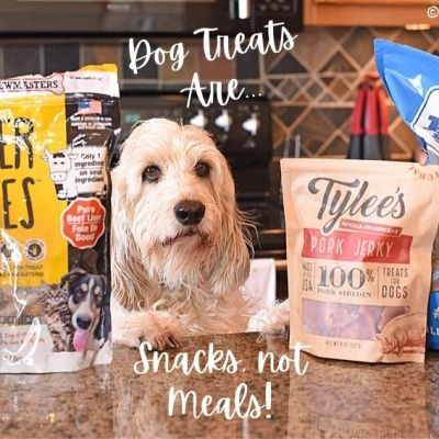 Remember, Dog Treats are Snacks, Not Meals
