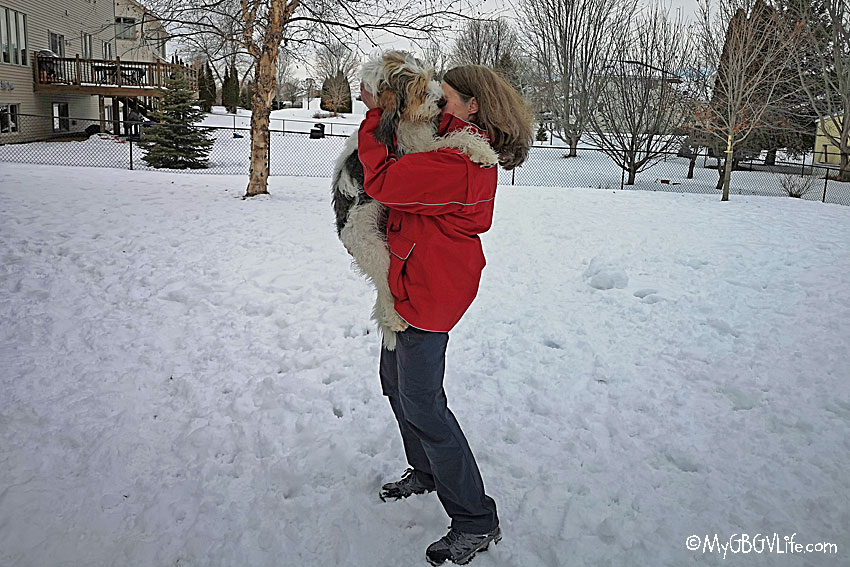 My GBGV Life National Hugging Day - Has Your Dog Hugged You?