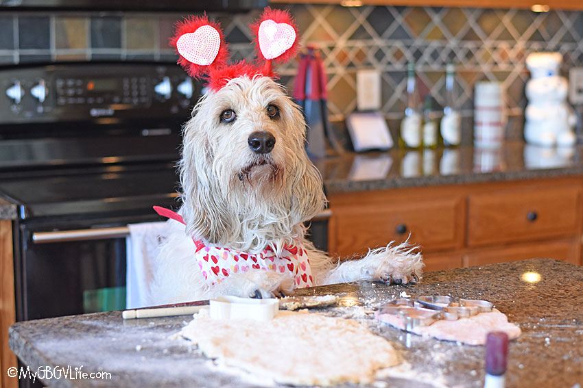 My GBGV Life Valentines Bacon Carob Cookies For Dogs