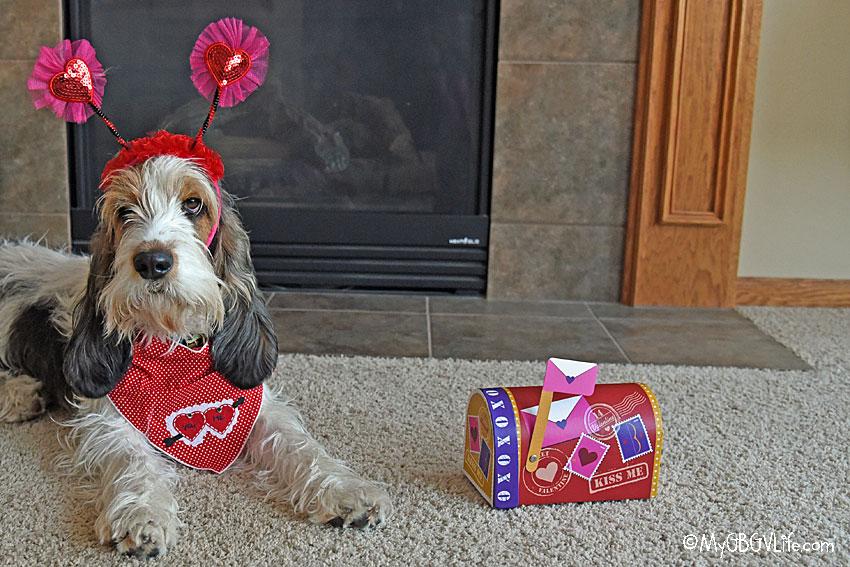 My GBGV Life Valentine hound