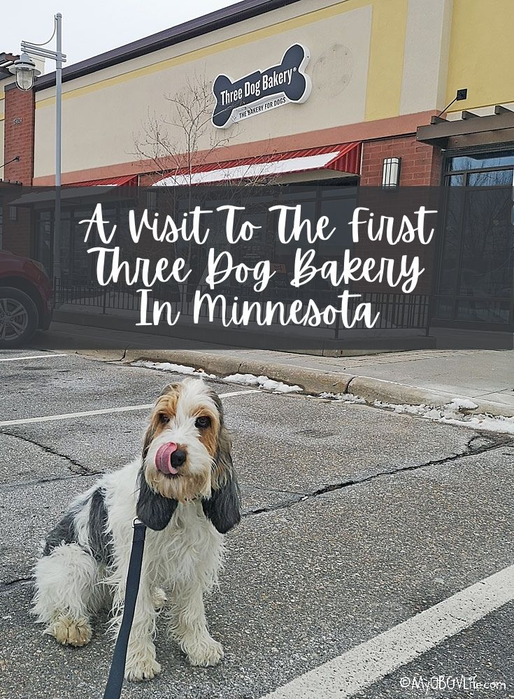 My GBGV Life A Visit To The First Three Dog Bakery In Minnesota