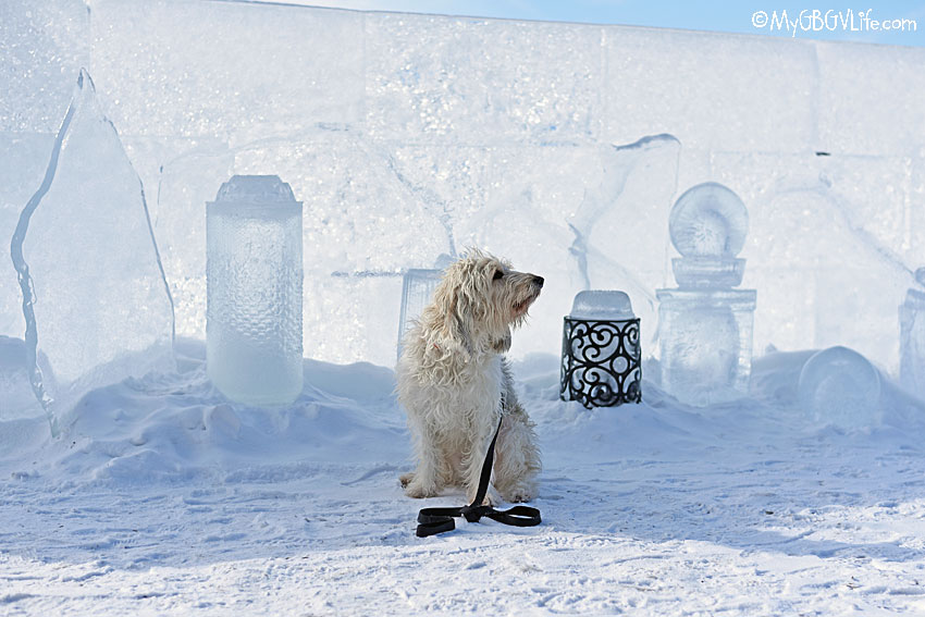 My GBGV Life ice sculptures