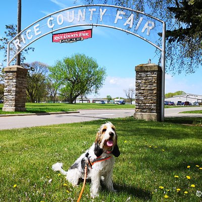 Top Notch Sniffing At The Rice County Fairgrounds