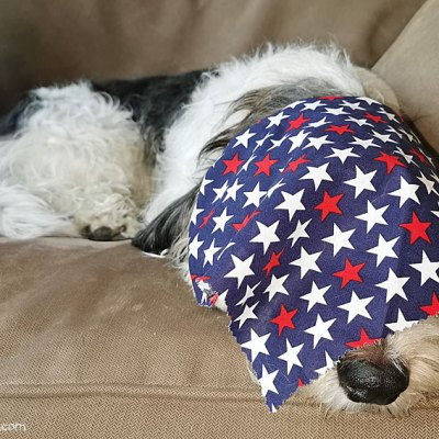 Our Stars Are Spangled And We Are Taking A Rest