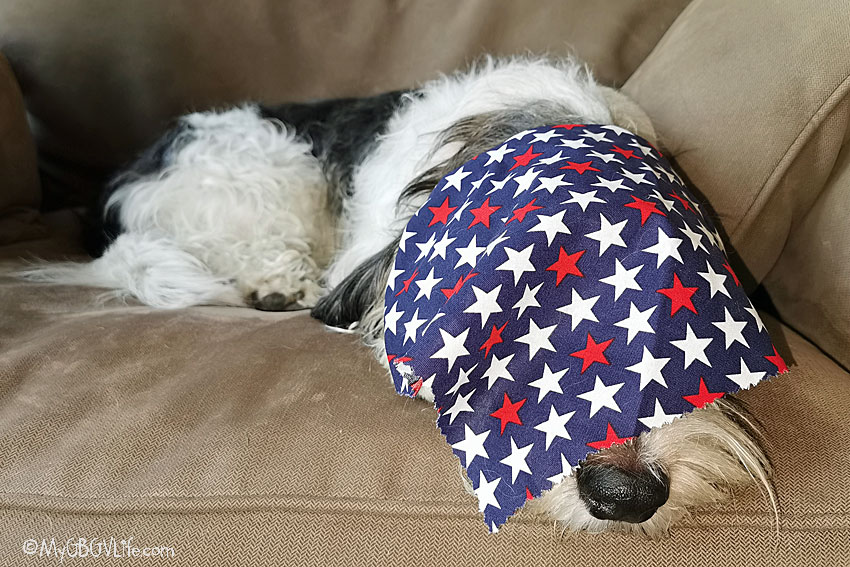 My GBGV Life Our Stars Are Spangled And We Are Taking A Rest