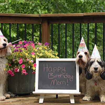 A Happy Birthday To Our Mom Today!