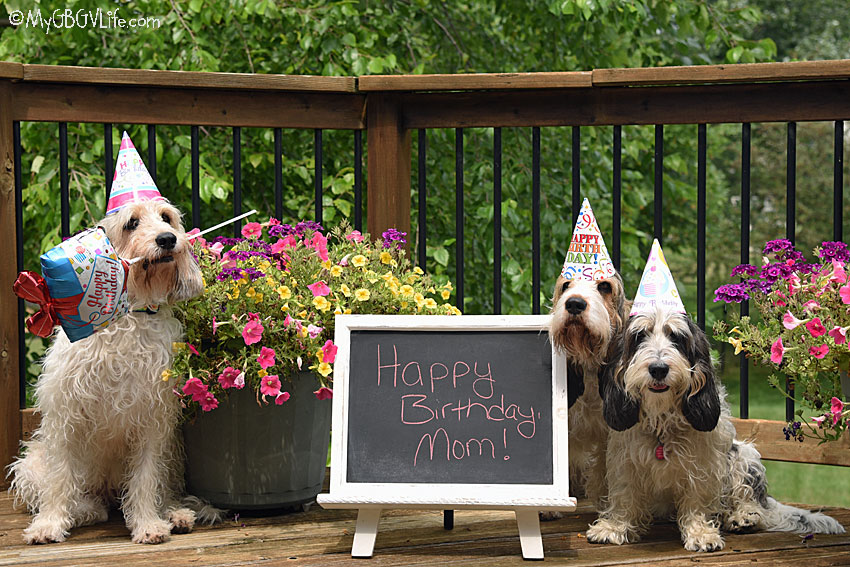 My GBGV Life A Happy Birthday To Our Mom Today!