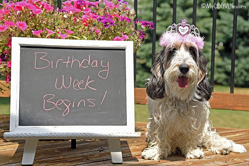 My GBGV Life Accomplishments Being Four - Birthday Week Begins