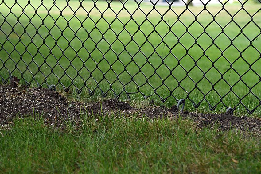 fence problem