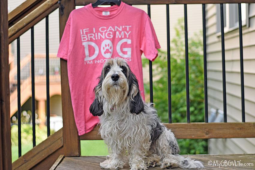 My GBGV Life take your dog along