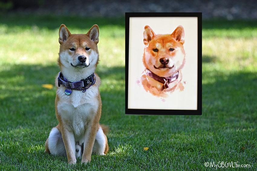 My GBGV Life A Marvelous Custom Pet Portrait Gift Of One Marvel