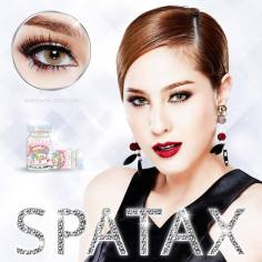 Spatax-Brown-1