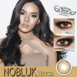 nobluk-brown-800x800
