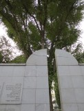 The monument at Umchlagplatz---a tree shows through to signify new life and the future