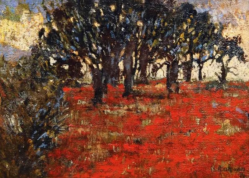 Poppy field during World War I