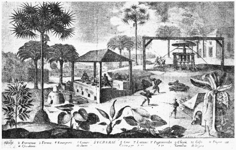 Sugar Mill in Saint Dominique