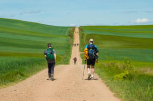 The line of pilgrims on the Camino Frances