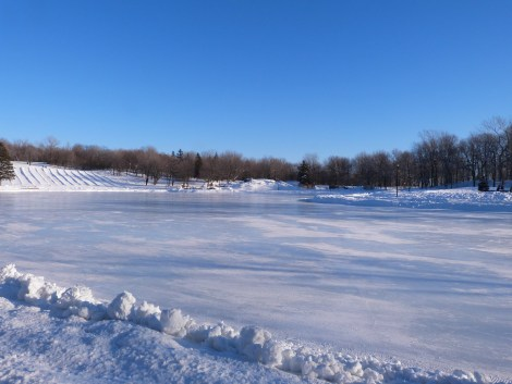 Mont Royal hiver 001