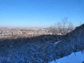 Mont Royal hiver 016