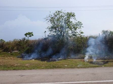 Incendie bord de route