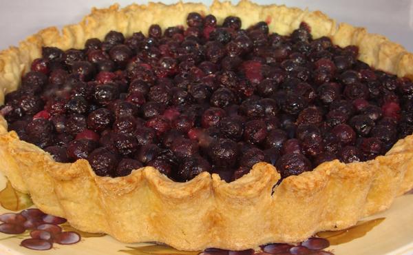bluberry tart gluten-free by annalise roberts