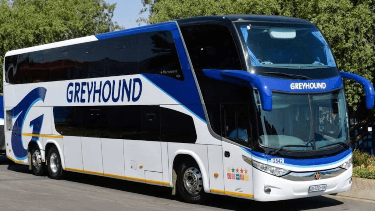 Greyhound Blames Border Closures for its Collapse