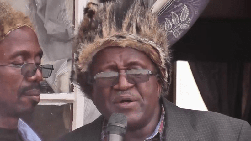 Nomination of Nkomo's Son as a Presidential Candidate Creates Cracks in ZAPU