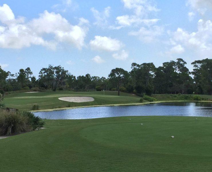8th hole, par 3, 124m at Floridan National Golf Club