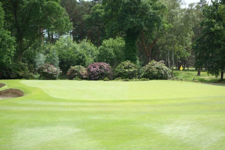 hole 1 green sunningdale old course