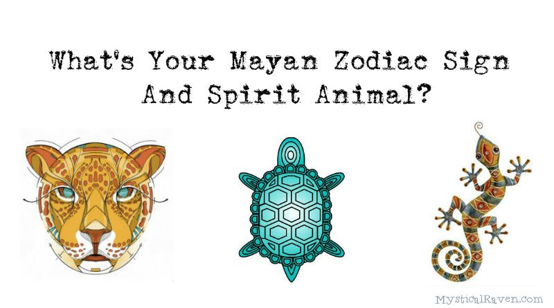 Image of: Aquarius Great Mind Whats Your Mayan Zodiac Sign And Spirit Animal Great Mind