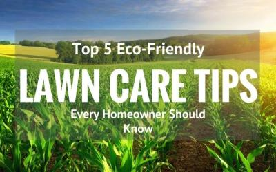 Top-5-Eco-Friendly-Lawn Care-Tips