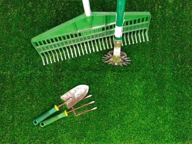 how-to-successfully-eliminate-brown-or-bald-spots-in-your-lawn-2