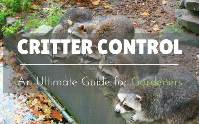 Critter-Control