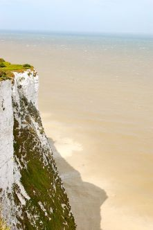 The cliffs only stay white because they're allowed to erode naturally. Where the cliffs are protected from erosion by man-made structures, like in the Port of Dover, plants will colonise the cliff-face making it appear green when viewed from the sea.