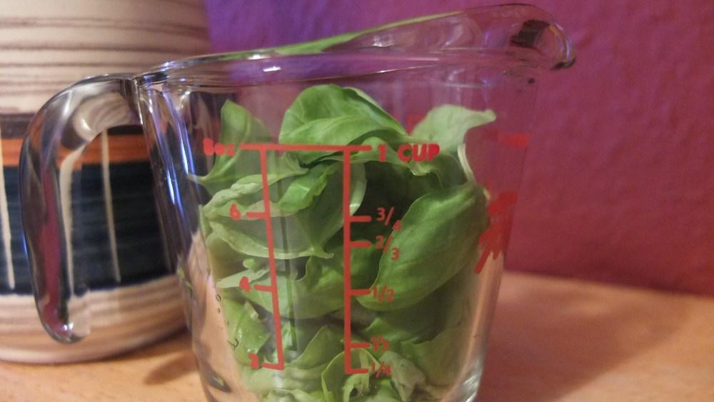 Nutritional Beast - Salty Basil Nut Spread (3/6)