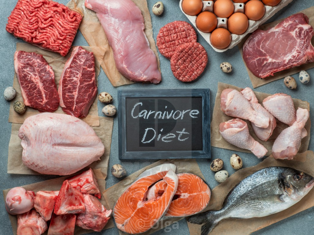 can canivore diet help with sibo