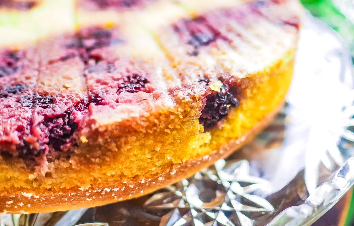 Blackberry Yogurt Snack Cake {THM:S}