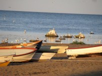 boats in the sunseet