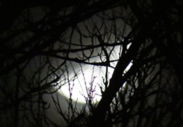 spooky moon - featured