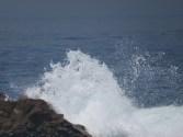 foz - rock meet wave